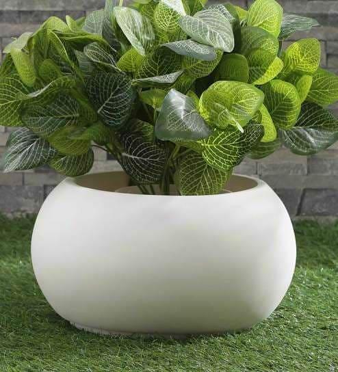 bowl planter fox b